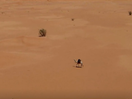 Behind the Work: Meet Sarha, the Camel-Turned-Photographer