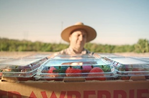 See the Extraordinary Life and Times of a Strawberry in New Ad Council Film