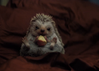 Adorable Hedgehog Heralds a Lucky New Year in Dutch Lottery Ad
