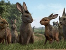 Noam Murro's Seven-Year Journey to Watership Down