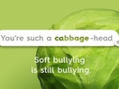 Lidl Romania Says 'Soft Bullying is Still Bullying' with Food-Inspired Insult Campaign