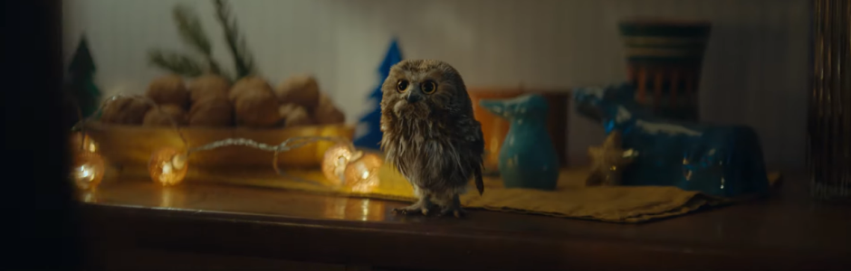 This Fluffy Little Owl is Spreading the Message of Christmas Charity for Supermarket Migros