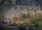 Finnish Garden Centre Brings Joys of Gardening to the City in New Film