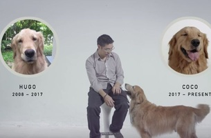 BBDO Bangkok Keeps Man's Best Friend Alive with 'Immortal Adoption'