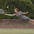 Chubb Insurance Launches First Campaign with 72andSunny Sydney During the Australian Open