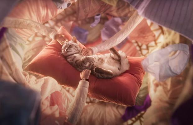 Cat Experiences a World of 'Purr' Feline Bliss in Whiskas Spot