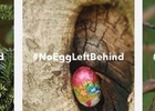 Spark Launches New #NoEggLeftBehind Social Campaign This Easter via Colenso BBDO, NZ