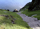 Failte Ireland  – Wild Atlantic Way – Skelligs