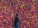 Director Luzian Schlatter Creates a Flower Wall for Stunning Sony Bravia Spot
