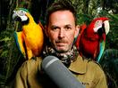 Chris Turner Sounds Off: Climbing Mount Lockdown