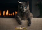 Sheba - Hungry Eyes