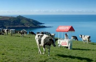 Kelly's of Cornwall's New TV Spot is Spoken Entirely in Cornish