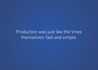 Vine Fix in Six
