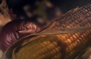New Action Against Hunger Spot Shows the Dramatic Impact of Climate Change