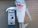 Fifth Third Bank Announces Shark Week Sponsorship with Jawsome Mockumentary