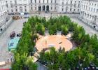 London Design Biennale 2021 Installation - 'Forest for Change'