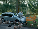 AAMI Insurer's Comic Campaign Does What Others Don't