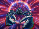 Sunburned Lobsters Line the Cosmos in Mollie's Fund's 'Solar Distancing' Campaign