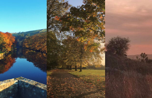 11 Colourists on the Joys of Falling into Autumn