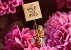 Bee_nfluencer