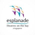 Havas Media Singapore Wins Media AOR For Esplanade