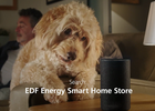 SALT.TV   Nick Collett   EDF Energy   Smart Home Store