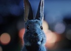 Rabbits Are Waiting in O2's Latest #FollowTheRabbit Campaign