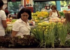 Brazilian Supermarket Swaps Shelves for Gardens in New Campaign from WMcCann