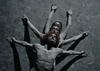 Witness Human Evolution as Never Before in This Mesmerising Dance Video