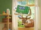 Quilted Northern Launches 'Trees of Comfort' Initiative with Nature-Filled Ads