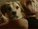 Clever Charity Campaign Reminds Pets of the Importance of Talking to Their Owners