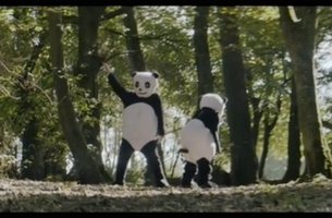The Twerking Pandas in Kodaline's Music Video is The Funniest Thing You'll See Today