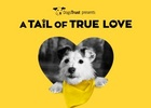 TMW's Valentine's Day Campaign for Dogs Trust is About the Love of Scooping Poop