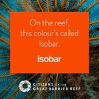 WiTH Collective - Linked by Isobar Launches 'Unite for the Reef' Campaign