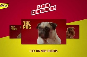 Pixelated Dogs Confess All in New Online Interview Series for SCHMACKOS