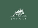 Jungleboys Changes Name to Jungle; Launches Female Creative Talent Initiative via Screen NSW