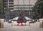The Burnt Christmas Tree Launches to Help Communities Rise from the Ashes