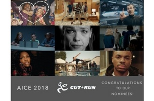 Cut+Run Shortlisted for 10 AICE Awards