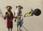 Meerkats Put Aussies to the Test in New Compare the Market TVC