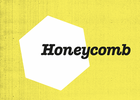 Honeycomb Adopts Bees for World Honey Bee Day