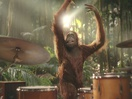 Darrell Lea Goes 100% Palm Oil Free With Bold New Campaign From Akkomplice