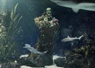 """JAMM Brings Cinematic VFX to """"Sea of Thieves: Museum of More Pirate"""" Campaign"""