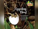 EsselWorld Bird Park's 'Nature, Nurtured' Campaign Will Leave You Eggstatic