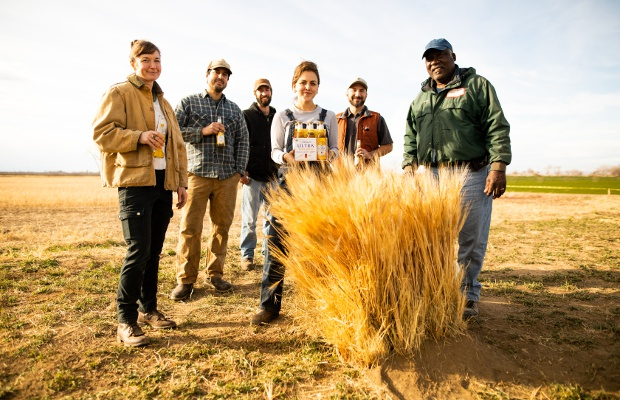 Michelob Super Bowl Ad Shows How You Can Support Organic Farming by Drinking Beer
