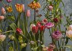 Flora Starkey - Spring Rites