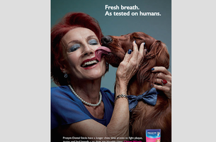 Affinity Sydney & Prozym Dental Sticks Make Canines Kissable Again