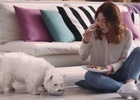 My Dog's Latest Campaign Transforms Dog World into a Culinary Adventure