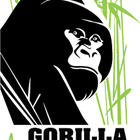 LIA Announces the Winner of the Gorilla Doctors Competition