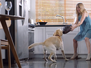 BBDO Atlanta's Hilarious Spot for HoneyBaked Ham Will Make Your Mouth Water