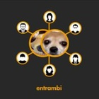 Chihuahua or Muffin? Cookies & Partners Launches New Work for THRON